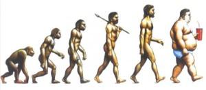 vyvoj člověka