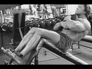 Arnold sed leh