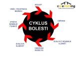 CYKLUS BOLESTI