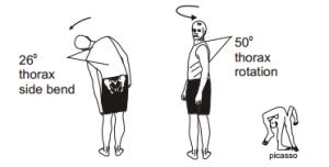 Pohyblivost páteře 2